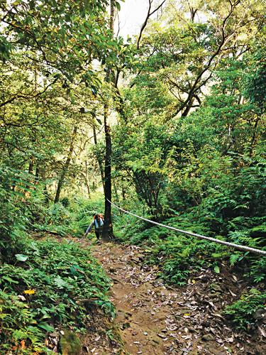 風情照片-石門山好漢坡步道。