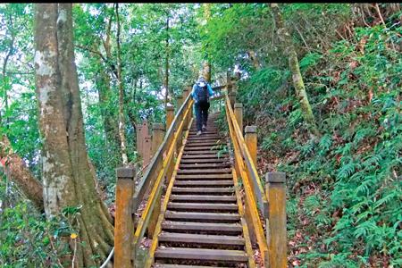 風情照片-馬拉邦山登山的木棧道。圖/陳素恩