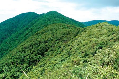 風情照片-立於山稜線眺望三角崙山完整山形。
