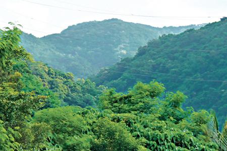 風情照片-由大武鄉愛國埔眺加奈美山。