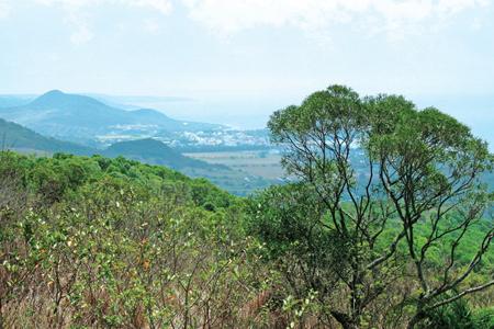 風情照片-沿途眺望大圓山壯麗山海景觀。