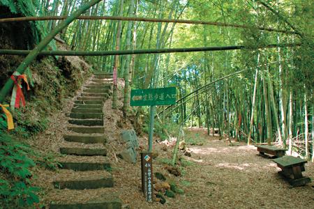 風情照片-竹林間的幽靜步道。圖/賴育民