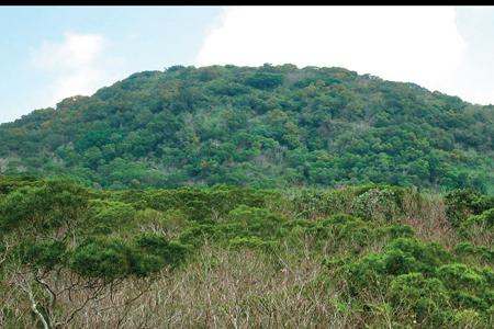 風情照片-大山母山近景。